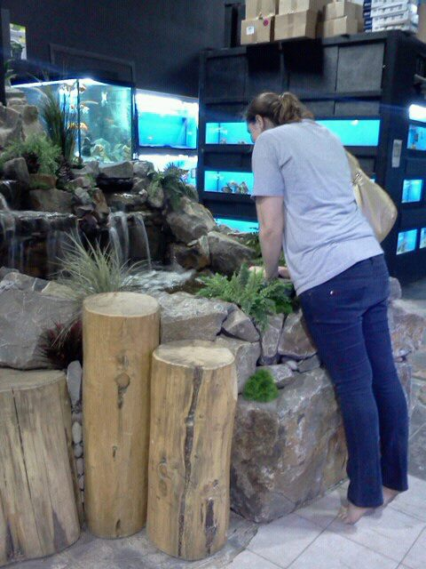 Happy and cute animals exotic pet store for Sierra fish and pets